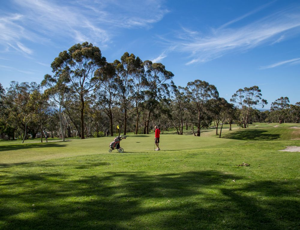 Enjoy a round of golf over the holidays at Mt Martha Golf Course