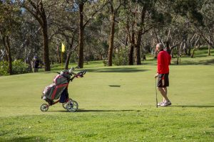Mt Martha Golf Course
