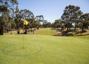 Mt Martha Public Golf Course - Hole 13
