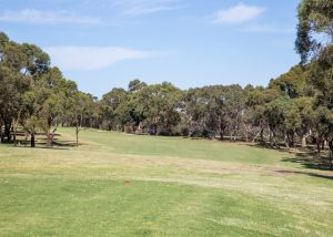 Mt Martha Public Golf Course - Hole 12