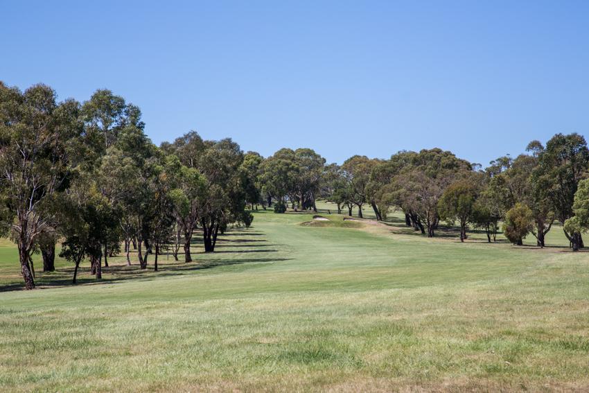 Mt Martha Public Golf Course - Hole 7