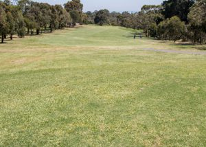 Mt Martha Golf Course - Hole 6