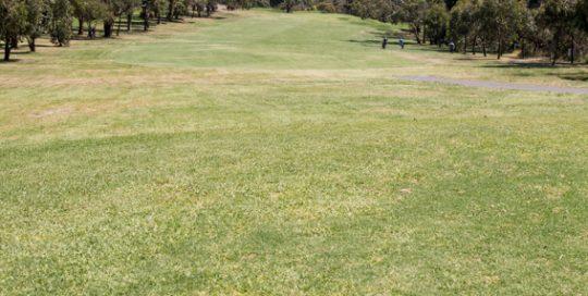 Mt Martha Golf Course - Hole 6