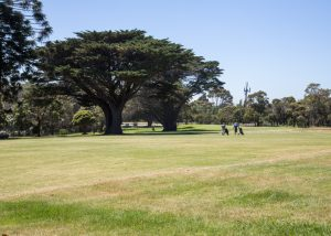 Mt Martha Public Golf Course - Hole 8