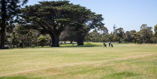 Mt Martha Public Golf Course - Hole 8