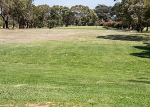 Mt MArtha Public Golf Course - Hole 5