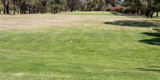 Mt MArtha Public Golf Course - Hole 5